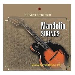 C302.A003 Cuerdas Mandolina