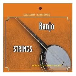 C302.A004 Cuerdas Banjo