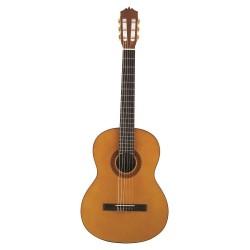 MCG-20S Guitarra Clasica TATAY