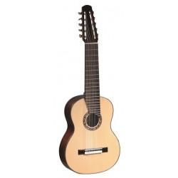 MTZ Guitarra 10 Cuerdas