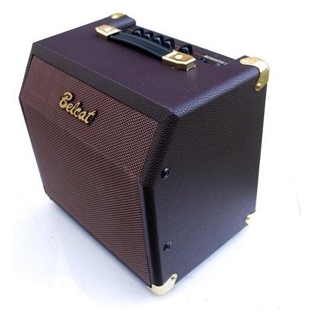 Acoustic 15C Amplificador de 15 W para Guitarra Acustica