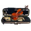 C370.TY-9 4/4 Violin 4/4 Macizo en estuche rectangular